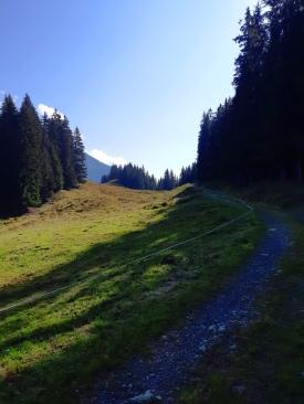 ...sondern ein gemütliches Bergauflaufen...